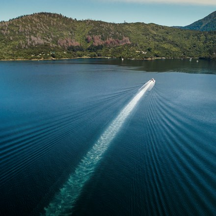 An aerial view of a Cougar Line boat and wake as it cruises through Queen Charlotte Sound/Tōtaranui in the Marlborough Sounds, New Zealand.