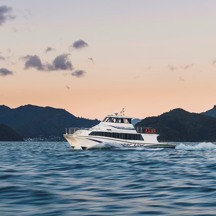 A Cougar Line boat cruises towards Picton at dusk while transferring passengers in Queen Charlotte Sound/Tōtaranui, Marlborough Sounds, New Zealand