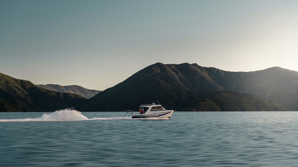 A Cougar Line boat cruises through the calm water of the Marlborough Sounds at the top of the South Island in New Zealand