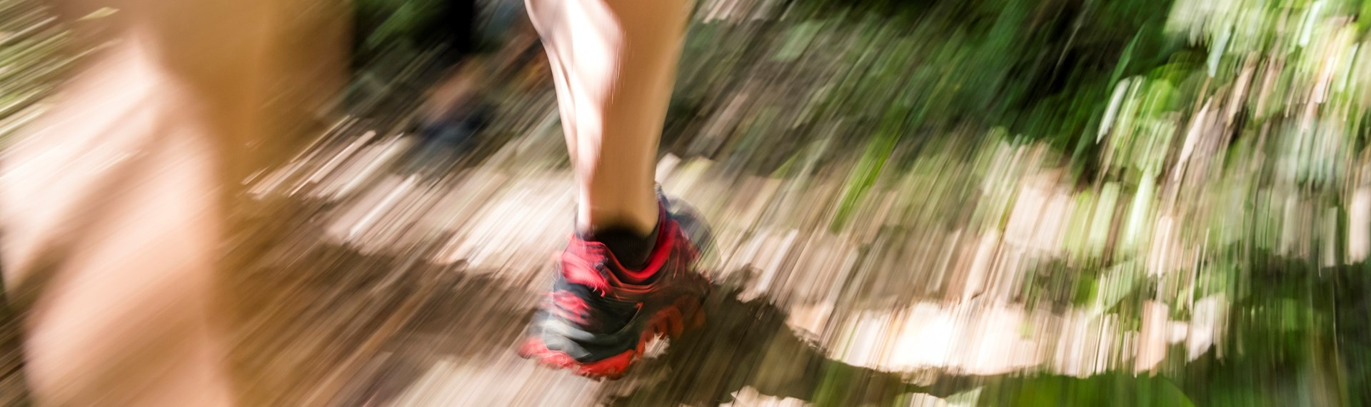 The legs and feet of a runner on the Queen Charlotte Track in the Marlborough Sounds, New Zealand.