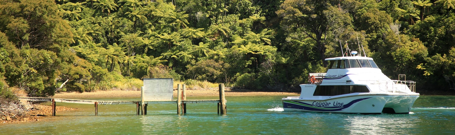 A Cougar Line boat at the Camp Bay jetty in a tranquil bay of calm green water, fern-filled native bush and a golden beach in the Marlborough Sounds, New Zealand