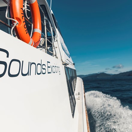 The side of Cougar Line's Sounds Exciting boat shows the boat's name, above the wake as it cruises through the Marlborough Sounds on a sunny day in New Zealand