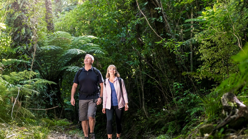 Two people walk on the northern Queen Charlotte Track in the Marlborough Sounds, New Zealand.